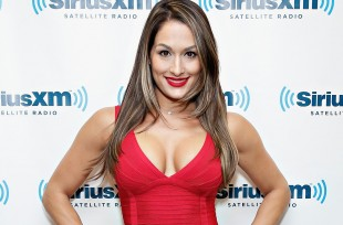 Wrestlezone image Nikki Bella Responds to Social Media Negativity and Reports of Cena Influencing Her Title Reign, Talks Ups and Downs of the Divas Revolution, More