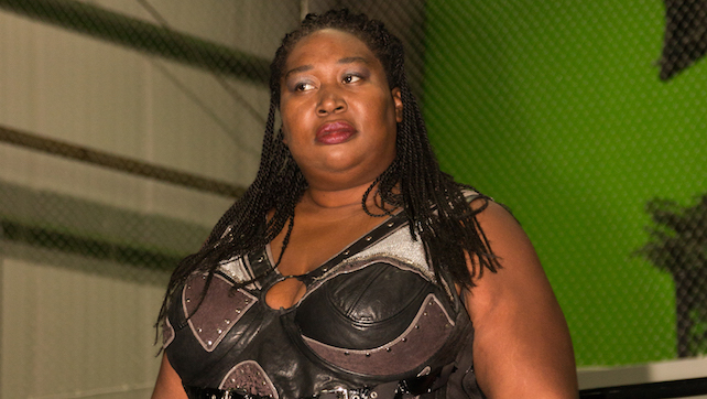 Image result for awesome kong rebe sky