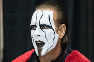 Wrestlezone image Bret Hart Says Seth Rollins Might Have Ended Sting's Career a Lot Faster, Compares Rollins/Cena to Goldberg, Praises Ex-WWE Stars