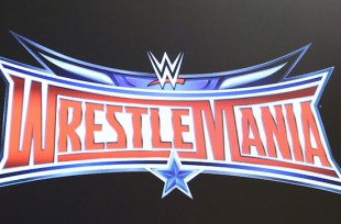 Wrestlezone image Injured WWE Star and Other Top Stars Featured on Early WrestleMania 33 Artwork (Photo), News on Post-WrestleMania Smackdown Live