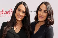 Wrestlezone image The Bella Twins Talk Their Return, Evolution & Training