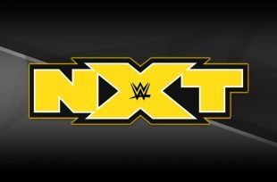 Wrestlezone image December WWE Tryouts Include Former UFC Fighter & All In Star