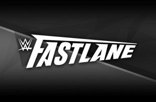 Wrestlezone image WWE Fastlane And Elimination Chamber Get 2019 Dates & Locations