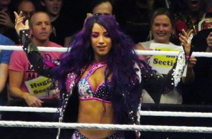 Wrestlezone image 'Emotional' Sasha Banks Recalls NXT TakeOver Match W/ Bayley; WWE Searching For Creative Writer's Assistant